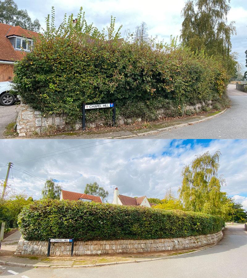 Hedge Cutting Devon